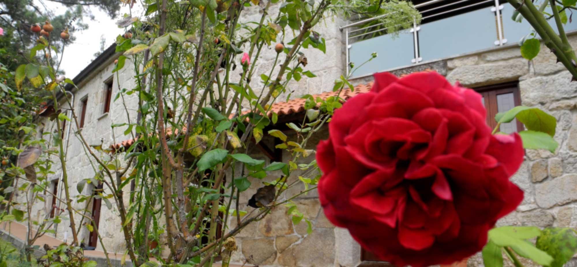 exterior_rosa